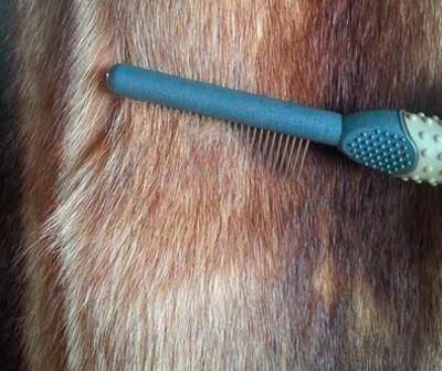 Щетка для чистки меха шубы