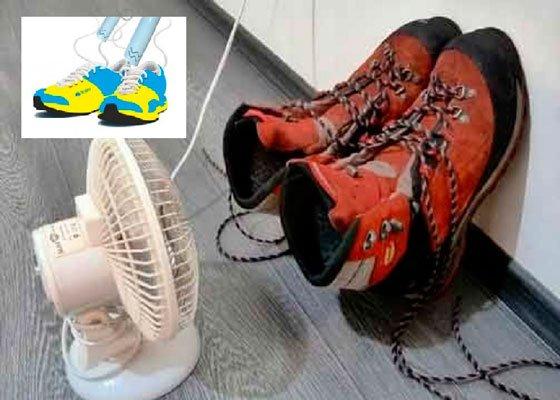 Используйте обычный фен для сушки кроссовок